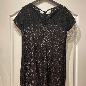 LOFT Lace Dress in Size 14
